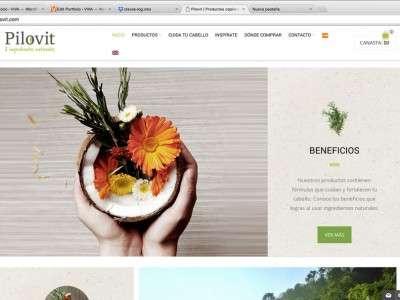 web-design-pilovit